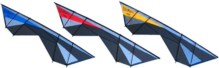 Cerfs-volants Revolution Supersonic